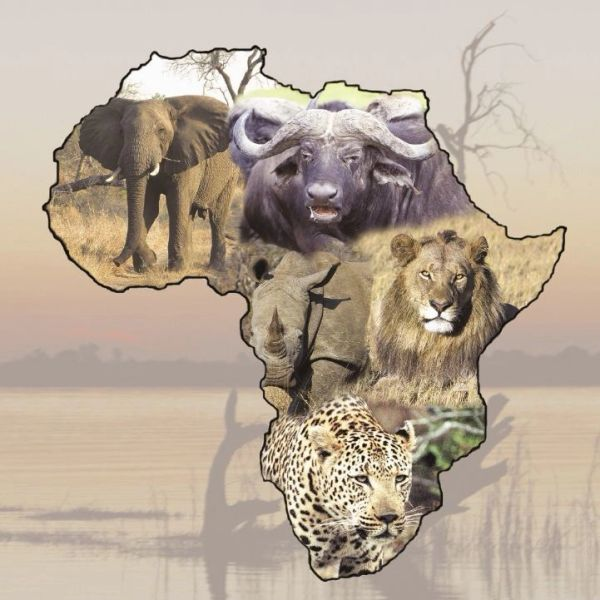 Big Five Puzzle By Alan Morgan Beautifully Contagious