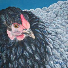 Victoria, Lavender Cochin Chicken