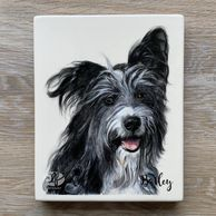 bearded collie cross portrait hand painted in ceramic underglazes