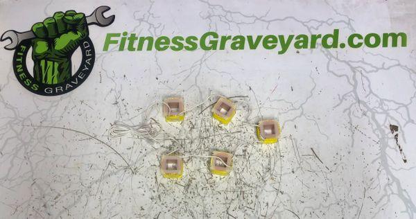 Bodyguard Fitness 5 Quantum Coil - OEM# 517054SEW - New - REF# MFT124188SH