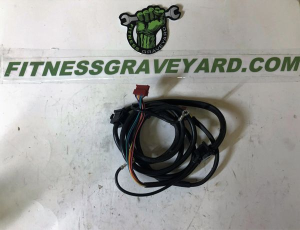 Gold U0026 39 S Gym Trainer 480   234963 Wire Harness Used Tmh79198cm