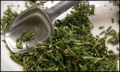 Wild Rosemary Olive Oil