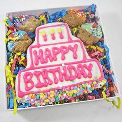 Happy Birthday Three Tier Cookie Cupcake Dog Treat Set