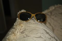 GOLDEN EYE SUNSHADES