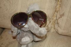 SPARKLE EYE SUNSHADES