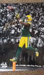 Green Bay Packers Davante Adams Autographed 16x20 photo