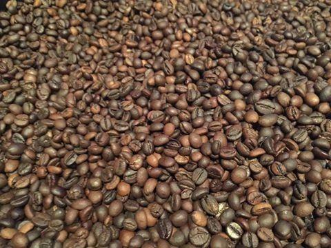 1 KG Roasted Coffee Beans (Native) Organic