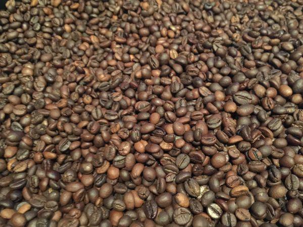 100g Organic Coffee Plunger/Filter