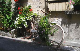 COPYRIGHT sallie tamblyn. My Little French House. French Bike