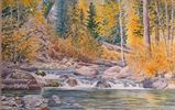 Watercolor, Rocky Stream with Pine trees and Aspens