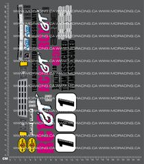 1/10TH ASSOCIATED - RC10 GT - BOX ART DECALS