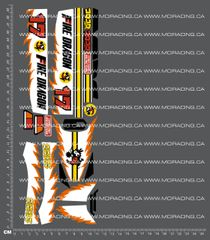 1/10TH TAM 58078 - FIRE DRAGON DECALS