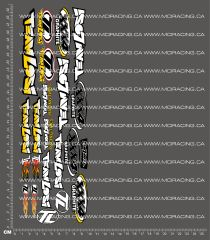 1/10TH LOSI - XXX4 GRAPHITE DECALS