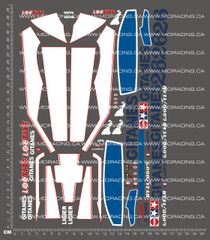 1/10TH TAM 58010 / 58012 - LIGIER JS9 MATRA DECALS