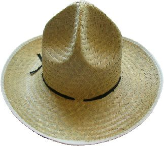 Veracruz Hat- Palm