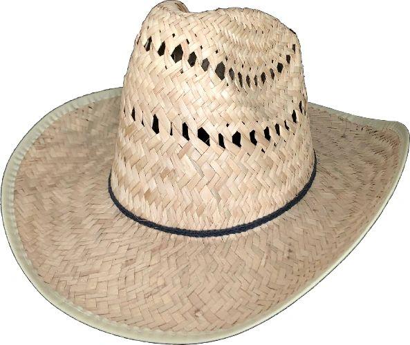 Sombrero de Palma (Sinaloa)