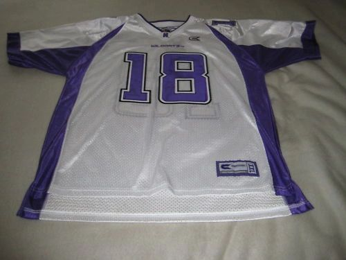 #18 NORTHWESTERN Wildcats NCAA Football White Mint Throwback Team Jersey