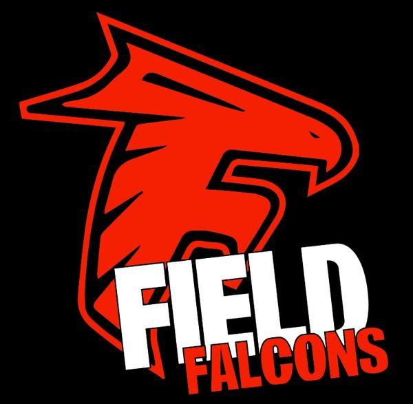 Field Falcons- 3D Falcons