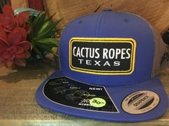 Cactus Ropes Blue/Gold