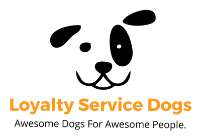 Loyalty Service Dogs