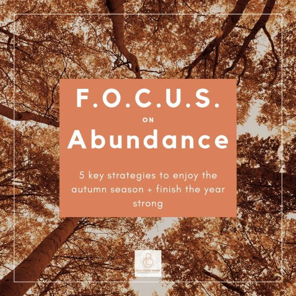 SOLD OUT / F.O.C.U.S. on Abundance [online course]