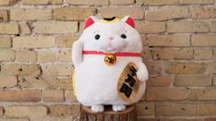 Lucky cat plushie