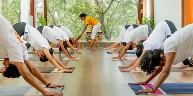 Yoga teacher training course, yoga classes, adho mukha svanasana, down facing dog