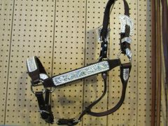 Show Halter with light blue stones