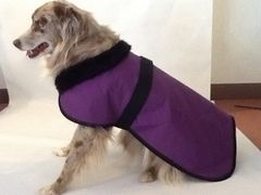 Quilted Dog Blanket with Fur Collar