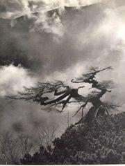 ATSUO AKANUMA ORIGINAL SIGNED PHOTO GRAVURE JAPANESE PHOTOGRAPHER 1950'S