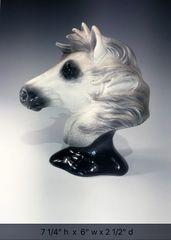 Wild Horse Bust