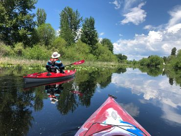 Guided Kayak Bird watching Tour at The Wood River Wetlands in Klamath County.