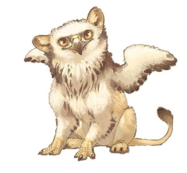 Baby Gryphons~Just In!!!! Sweet & Loyal Entities Ready for Their First Keepers