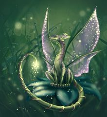 Nawkaw - Angelic Mini Fairy Dragon - 1,033 Year Old Empathic Male