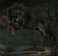 Majestic Male Kelpie - Water Horse - Travel To Other Realms, Meet and Blessed By New Spirits