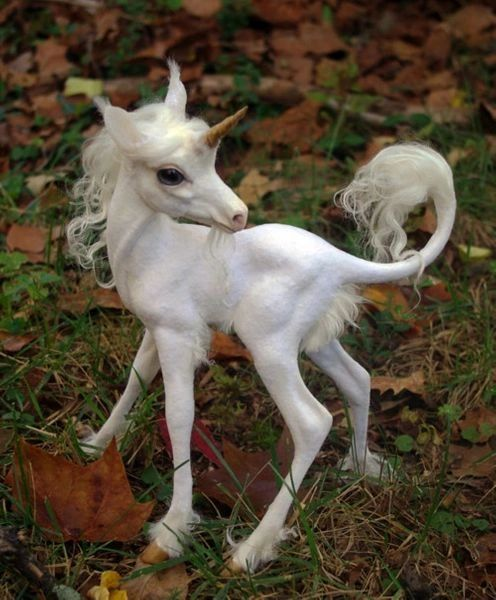 Baby Unicorns ~ Sweet Entities Seeking Loving Keeper - Brings Healing, Renewal, Good Luck, and Much More