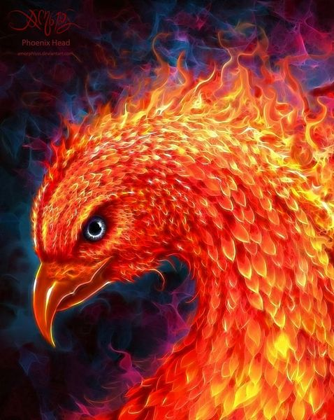 Free Young Phoenix With Any Order Over $10.00 Shipping Does Apply
