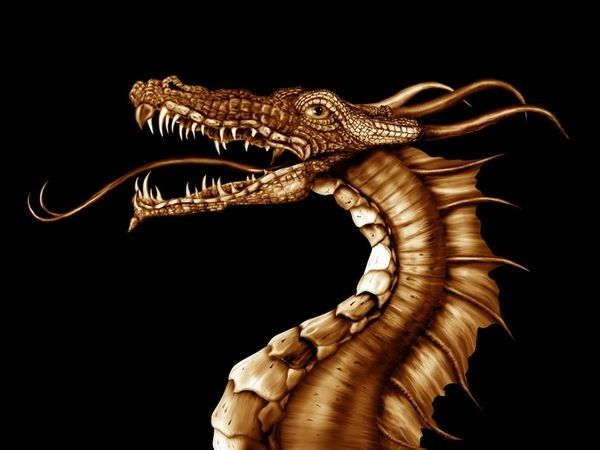 Golden Baby Dragons! Magickal Entities Seeking Loving Keeper! You Choose Male Or Female