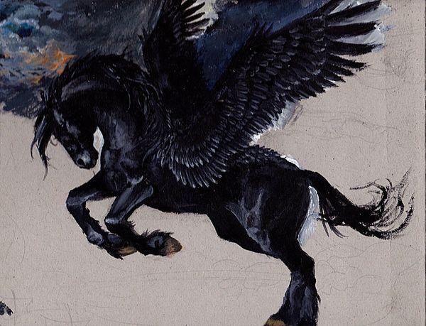 Female Black Pegasus - Capable Of Chaos Magick!
