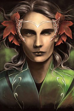 Level 7 Male Drow Elf - Experienced Spell Caster and Warrior Offers Instant Curse Removal and Protection