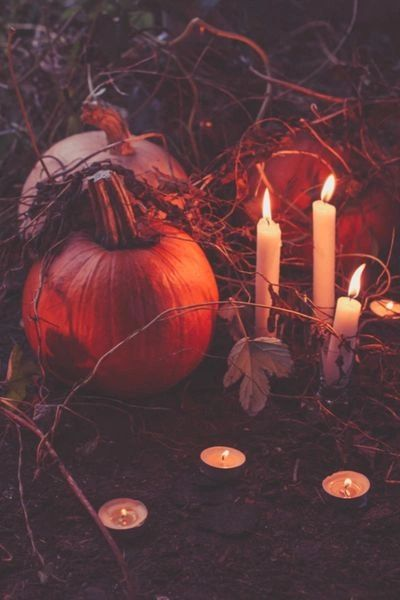 LAST SPOT Pre-Order Samhain 2021 Custom Conjuring of Your Personal Hybrid ~ A Most Power Spirit or Entity Awaits You!
