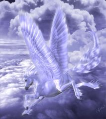 Young Pegasus - Brings Happiness To The Most Negative Of People Sweet Active and 100% Magickal
