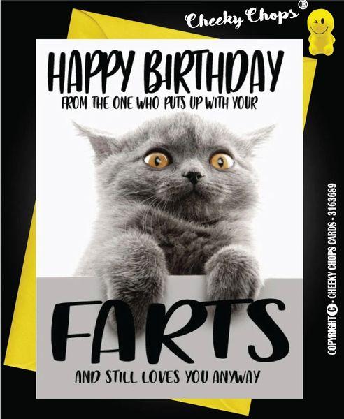 Birthday Cat Fart - C43