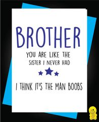Funny Birthday Cards - Brother you are like the sister I never had C479