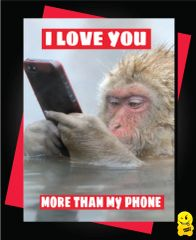 I love you more than my phone V80