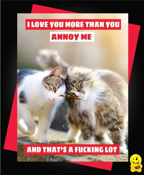 I love you more than you annoy me and that's a fucking lot V75