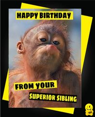 From your superior sibling Animal02