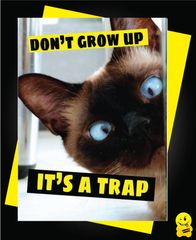 Don't grow up it's a trap Animal05