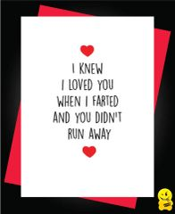 I knew I loved you when I farted and you didn't run away A51
