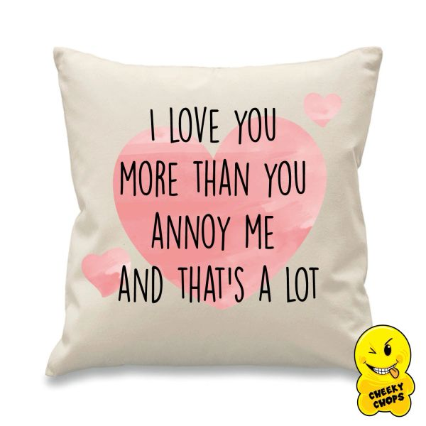 Cheeky Cushion I love you more than you annoy me CUSH10